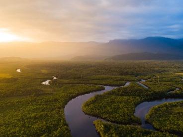 Sierra Madre pflanzt Bäume im Amazonas-Regenwald