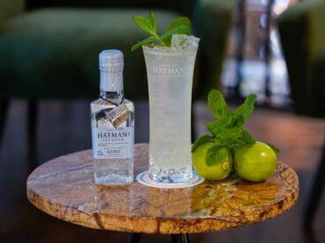 Wenig Alkohol - viel Geschmack: Hayman's Small Gin