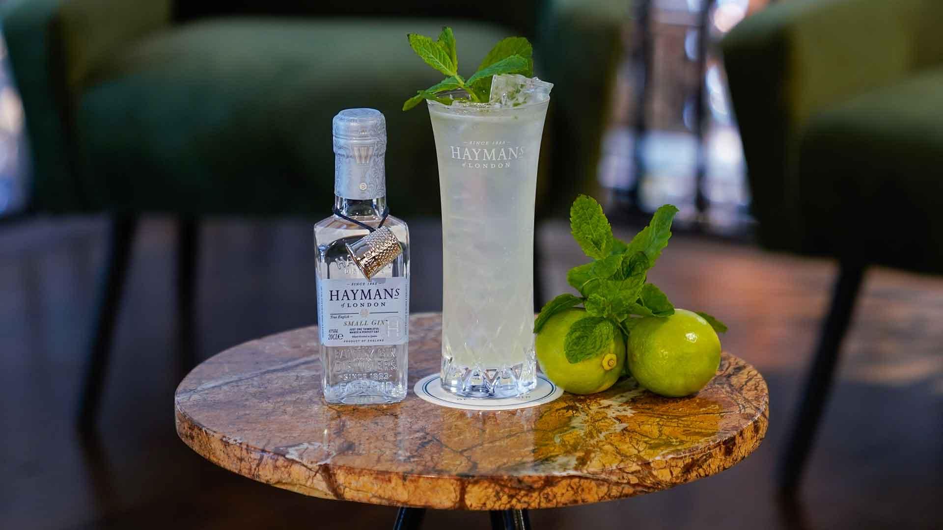 Hayman's Small Gin mit Drink und Minze und Limetten